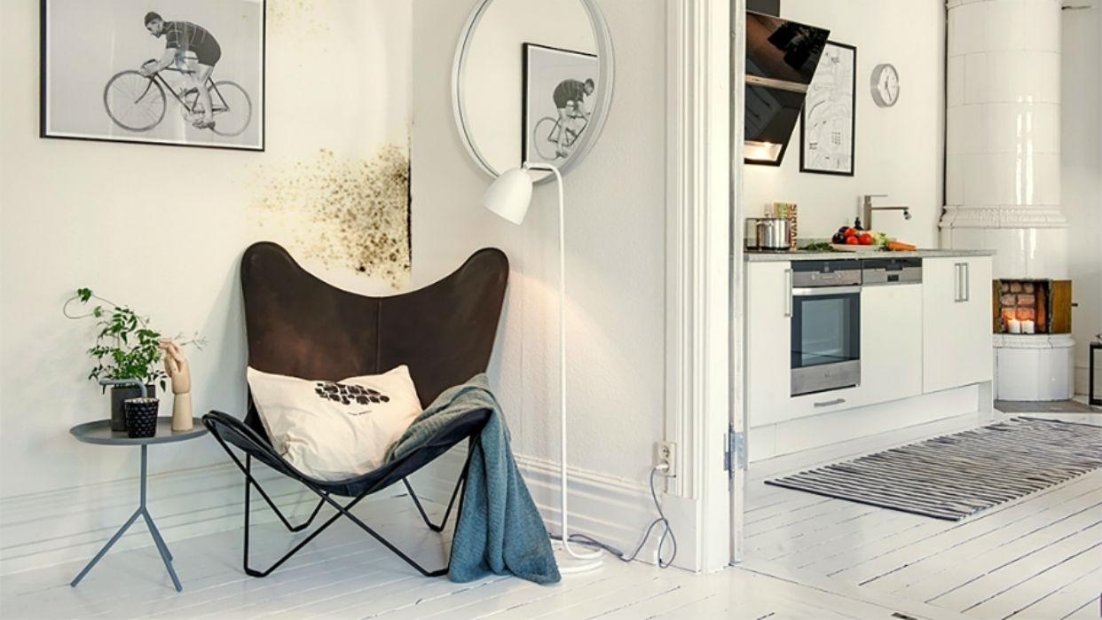 Evitar el moho en las paredes de la casa si puede ser posible - Moho en paredes ...