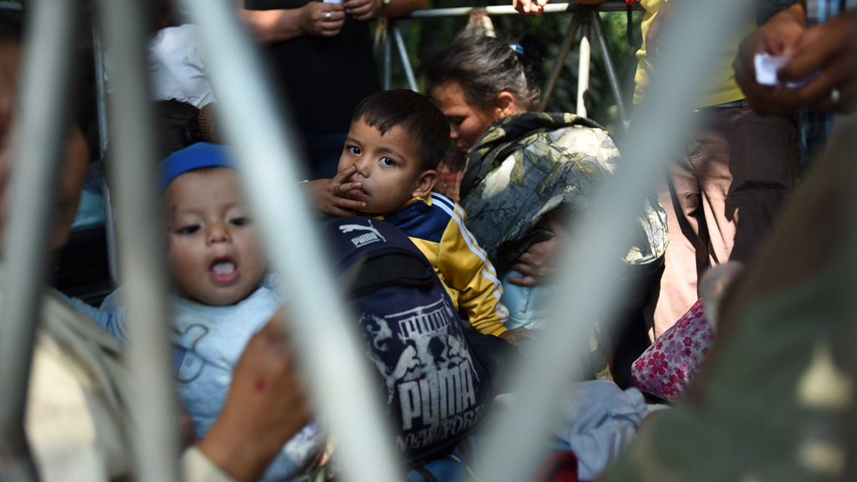 La separación de familias migrantes en EEUU afectó a más niños de lo estipulado