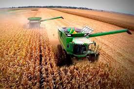 1 millón de toneladas de fertilizantes piden para el plan de siembra