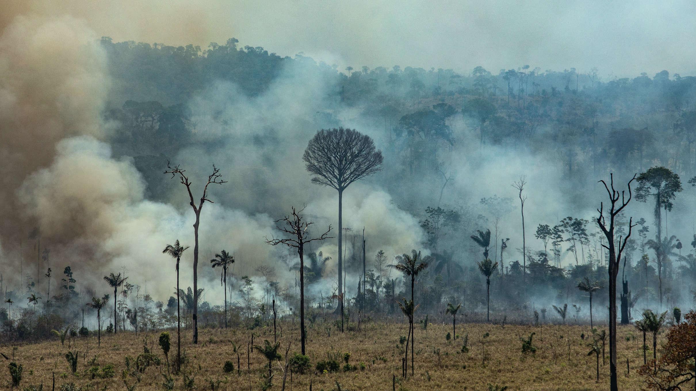 Cientos de nuevos fuegos amazónicos en medio del clamor mundial contra Bolsonaro