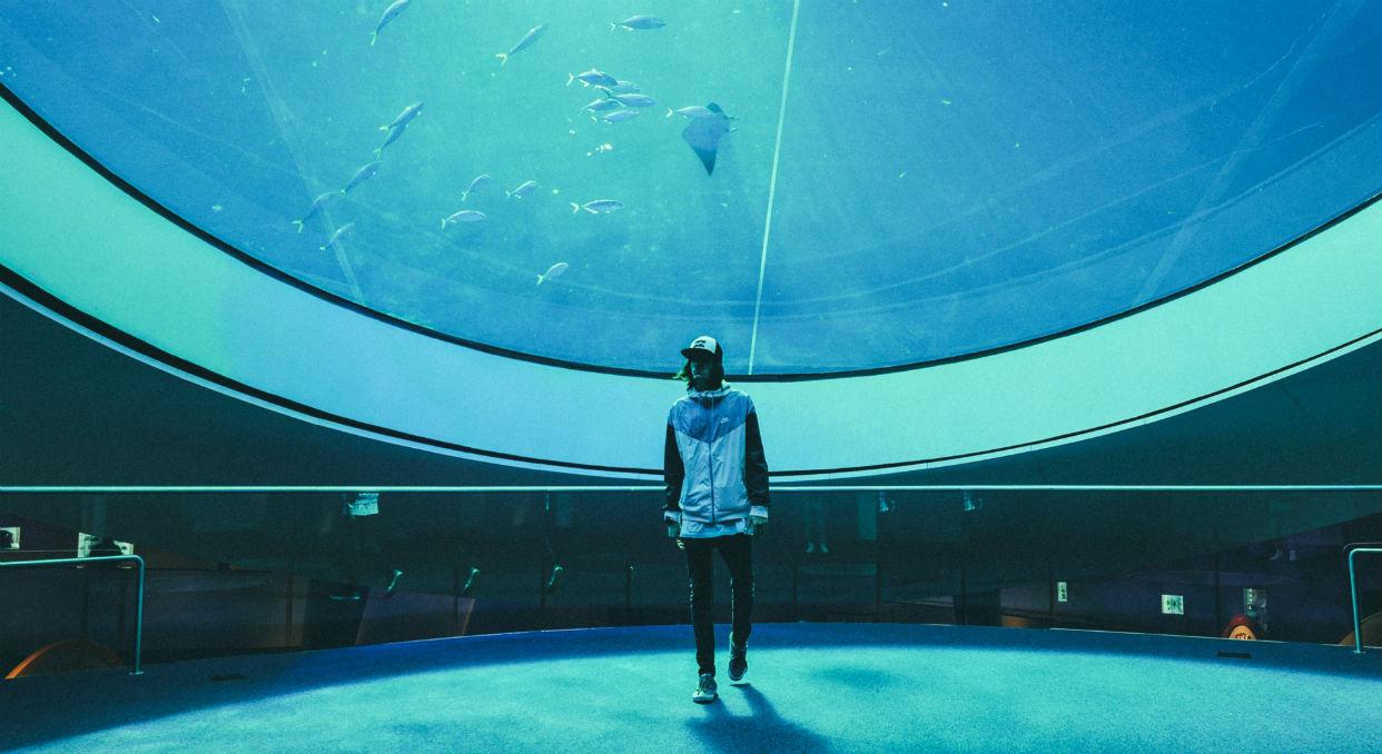 """""""Me Rehúso"""" de Danny Ocean rompe récord en Spotify"""
