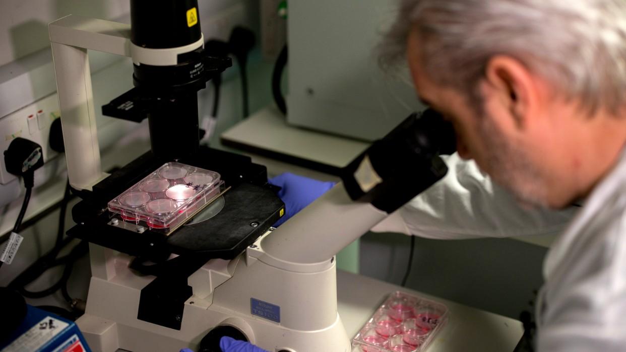 Científicos crean mapa a escala atómica del coronavirus, clave para una vacuna