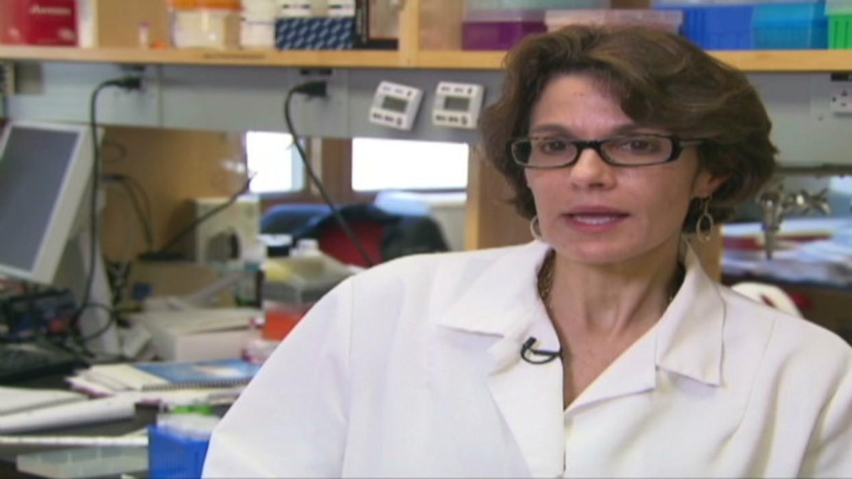 Científica venezolana desarrolla test que revela rápidamente la presencia del virus