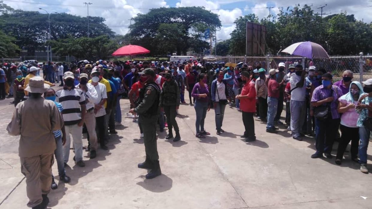 CNE: Simulacro electoral registró concurrencia masiva y superó las expectativas propuestas