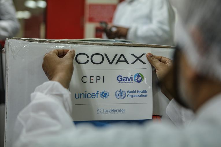 OMS: Covax espera recibir 250 millones de dosis de vacunas en 6 a 8 semanas